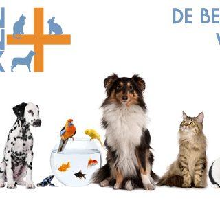 Gek op je huisdieren? Profiteer dan nu van de Bol van Voordeel aanbieding van Mijn Dierenkliniek Lisse: 10% korting op een consult!